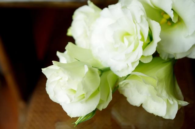 お盆の供花として使われることの多い花のご紹介