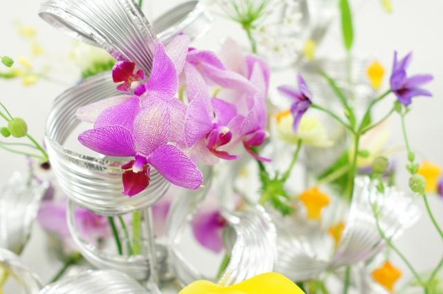 9月の誕生花~南国の雰囲気が漂うデンファレ~