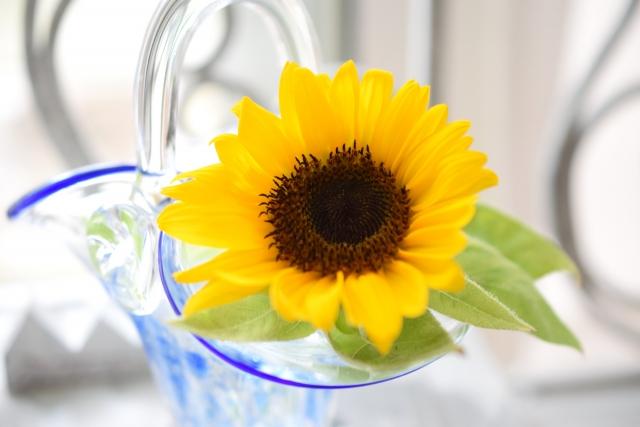 7月の誕生花~夏らしいひまわり~