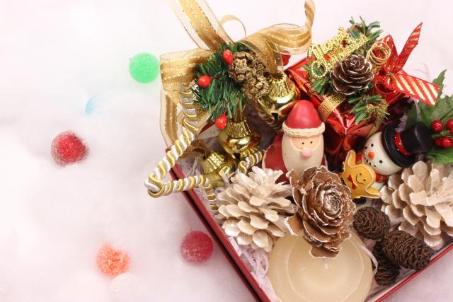クリスマスにぴったりな鉢植え~冬を彩るお花~