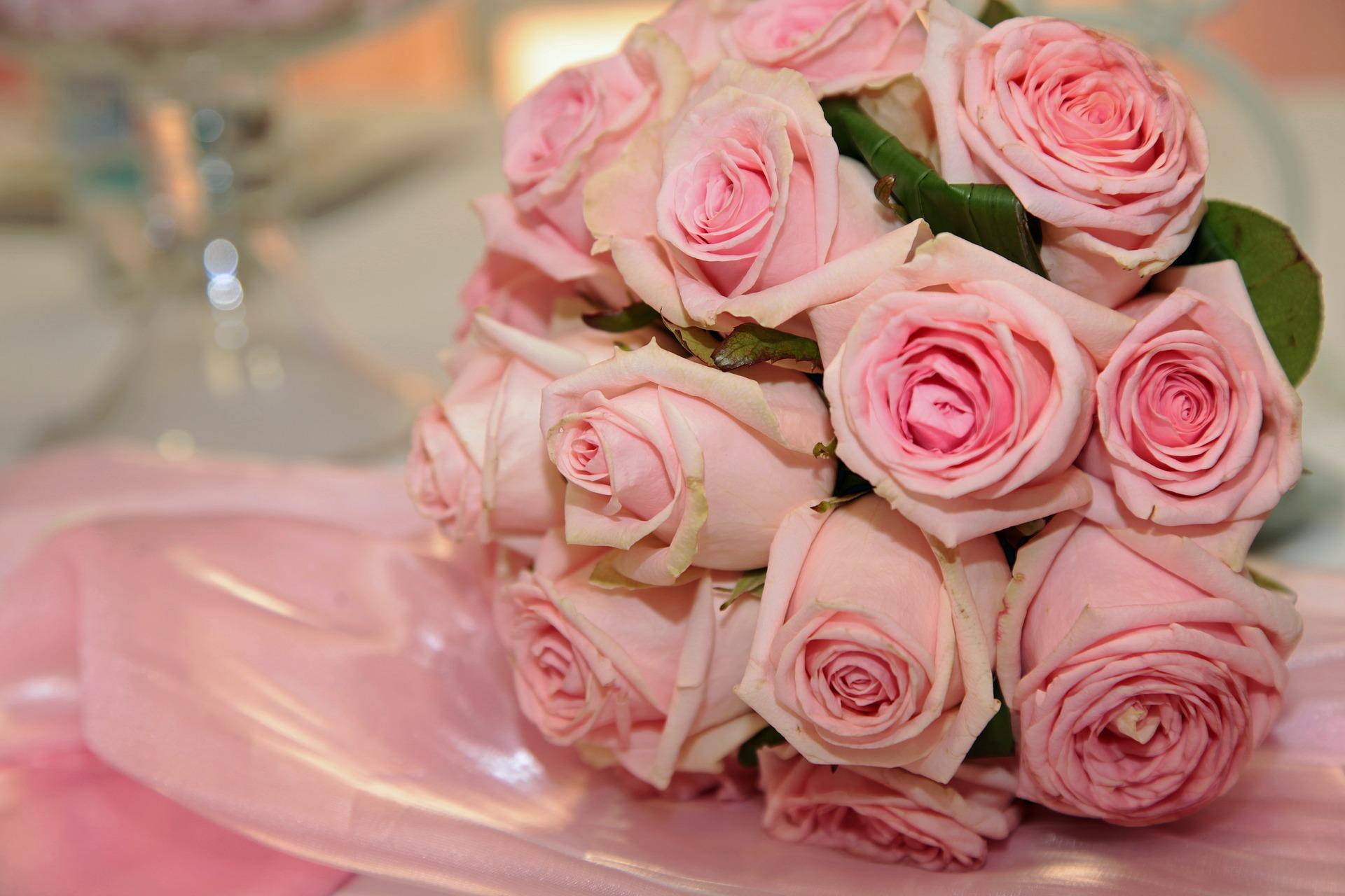5月の誕生花はピンクバラ~画像付きでご紹介~