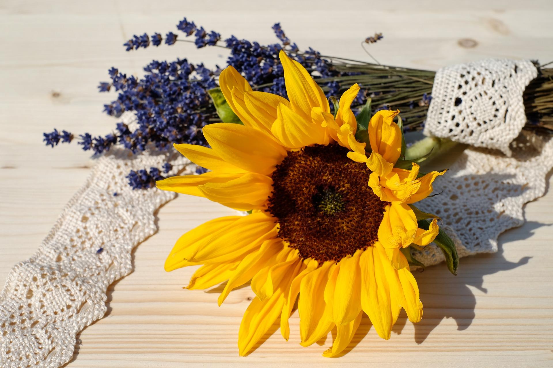 7月の誕生花~花言葉もプレゼントに最適なひまわり~