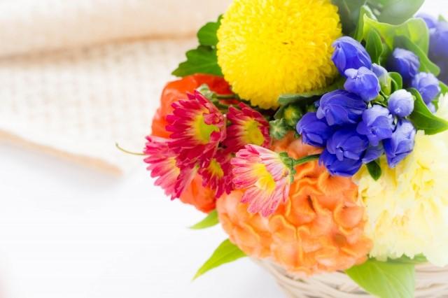 敬老の日に贈る花言葉~健康・長寿・感謝~