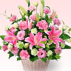 【アレンジメント】ピンクユリとトルコキキョウのアレンジメント(お届け日:4月1日〜)