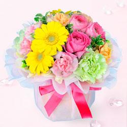 花の画像 p1_1