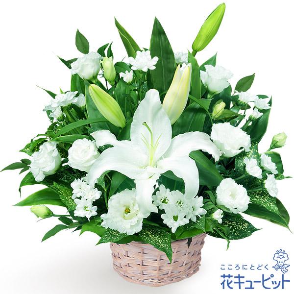 【お盆】お供えのアレンジメント哀悼の花として最適なアレンジメント