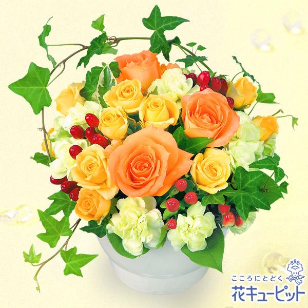 【10月の誕生花(オレンジバラ等)】オレンジバラのアレンジメント陶器のコンポートにオレンジバラをアレンジしました!