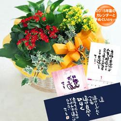 ★4位★カランコエの寄せ鉢と【相田みつを】2015年版中型カレンダーと手ぬぐいセット