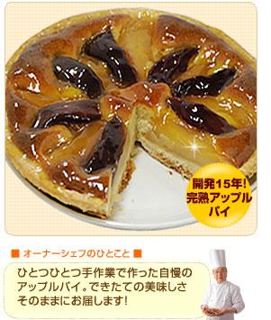 【ガトーマスダ】完熟アップルパイ