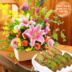 秋の華やかアレンジメントと【ガトーマスダ】抹茶とフルーツパウンドセット