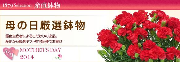 インターネット花キューピットの2014年母の日特集