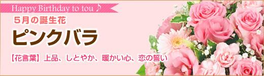 5月の誕生花|ピンクバラ
