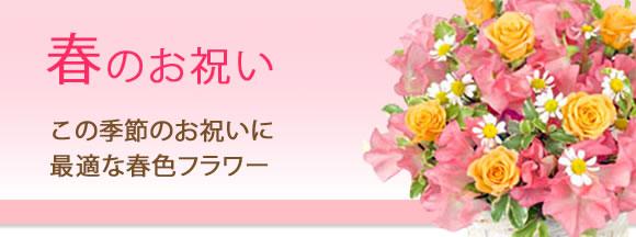 春のお祝い|この季節のお祝いに最適な春色のフラワー